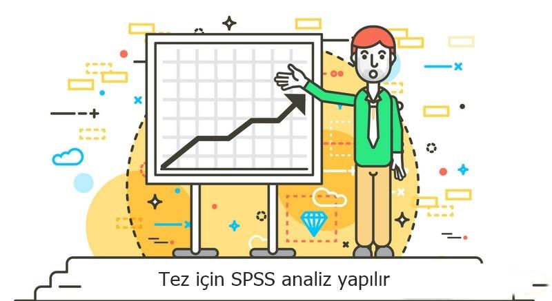 Tez için spss analiz yapılır