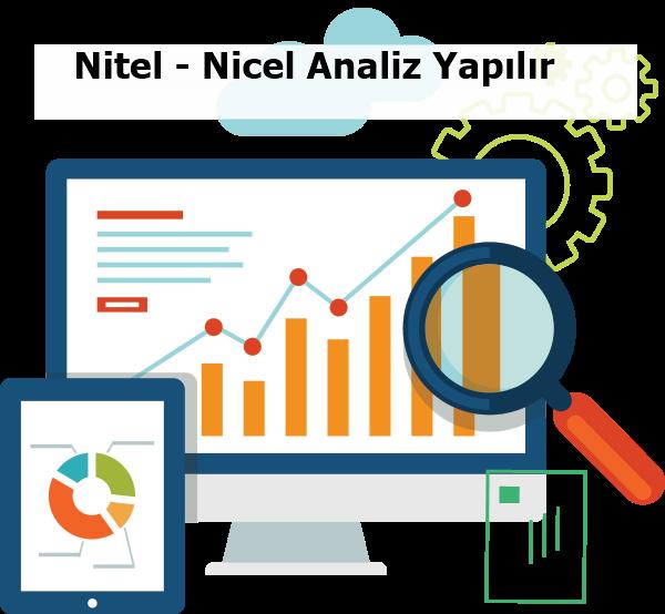 nitel ve nicel analiz nasıl yapılır